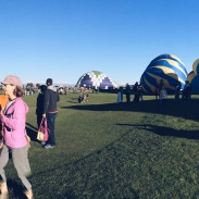 Erie Hot Air Balloon Festival