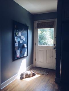Sunbathing Stella