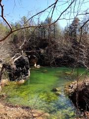 mossy lake