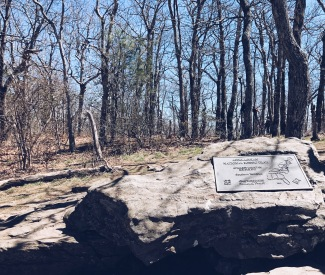 Appalachian Trail plaque at the summit of Springer Mountain